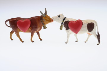 Cow and red heart