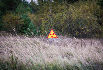 Ionizing Radiation sign next to Red Forest in Chernobyl Zone