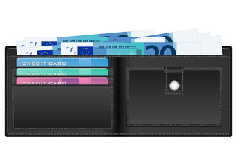 wallet with twenty euro banknote