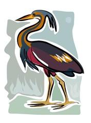 sketchy heron