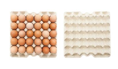 Eierpalette - voll und leer
