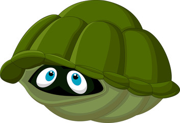 Cartoon  turtle hides in its shell