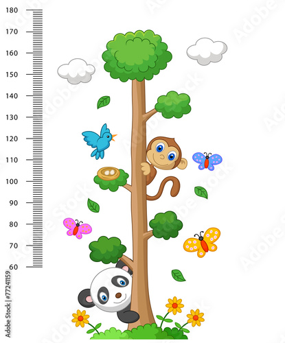 Wall meter with three and wild animals