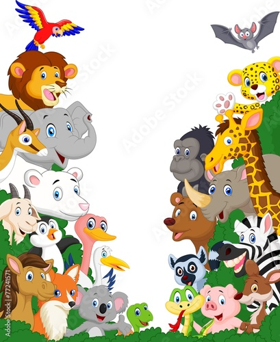 Wild animal background