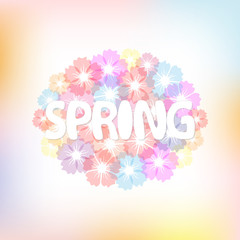 Colorful spring background with flowers.