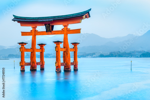 Miyajima Torii gate, Japan. - 77248150