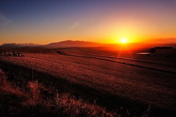 Sunrise over farmland