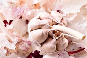 Organic garlic. Natural antibiotic. Healthy food. Natural backgr