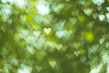 Heart nature bokeh background.