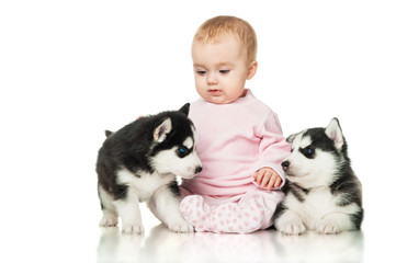 Little girl with two puppies husky