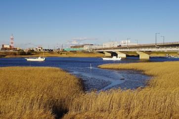 枯れ草と川