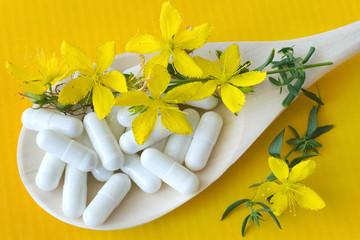 common St. John's wort -  hypericum perforatum - natural antidep