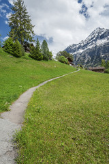 Hiking path in Grindelwald, Swiss