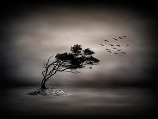 Mystische Landschaft am Meer