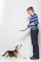 Mach Platz - Gehorsamsübung eines Hundes