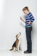 Mach sitz - Gehorsamsübung eines Hundes