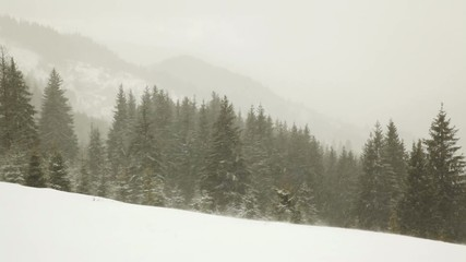 Winter storm (panning from right to left)