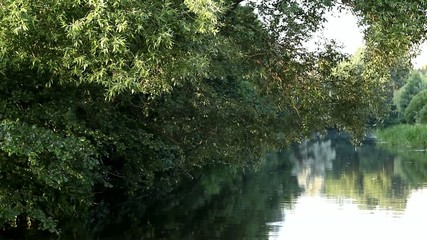 river and trees in the morning outside the city