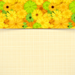 Card with yellow and green gerbera flowers. Vector eps-10.