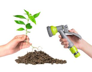 planted a tree and sprayer garden hose,go green concept