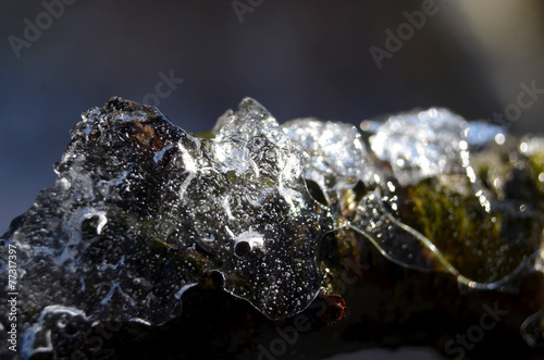 lód © zetat
