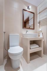 Elegant toilet in pastel colors