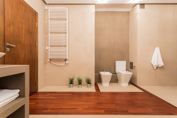 Contemporary toilet with wooden elements