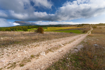 Empty dirt road at autumn sunny day