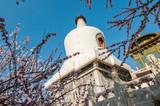 The Bai Ta (White Pagoda) stupa in Beihai Park, Beijing, China