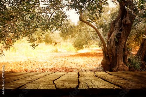 Keuken foto achterwand Bossen Wooden table with olive tree