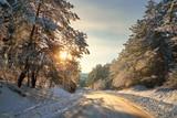 Naklejka Winter road in forest