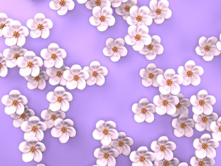 White Cherry Blossoms On Purple Background
