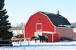 Obrazy na płótnie, fototapety, zdjęcia, fotoobrazy drukowane : Horses by Barn