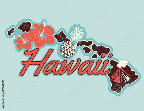 Vector graphic T-shirt design of Hawaii in retro style