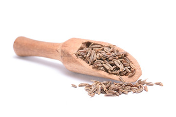 Caraway seed in an olive wood scoop