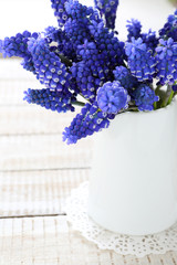 Hyacinth in a white vase