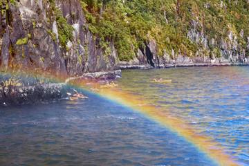 Kajaktour im Milford Sound