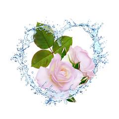 Blumen 341
