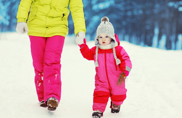Family walking in the winter day