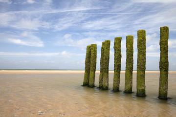 Poteaux à marée basse