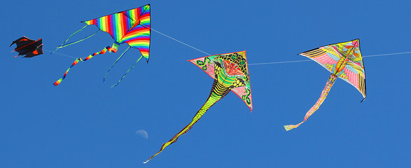 four beautiful kites flying in the sky