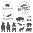 Set of wilderness quotes, silhouettes and design elements - 77375332