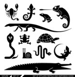Set of geometrically stylized reptiles and amphibians icons poster