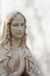 Statue Of Virgin Mary - 77375585