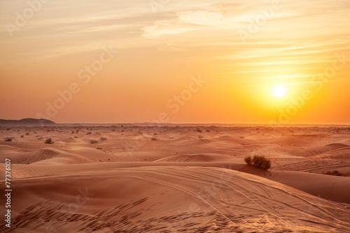 Sundown in desert. - 77376107