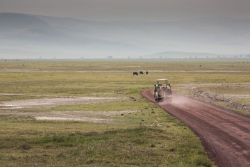 View over Ngorongoro Crater, Tanzania, East Africa (UNESCO)