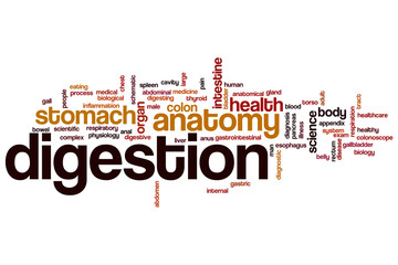 Digestion word cloud