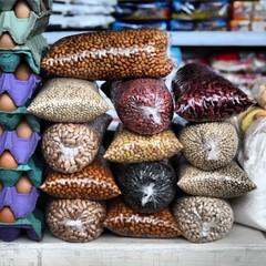 Brazil, Amazonas, Various species of beans