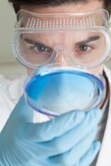 Scientist looking at petri dish