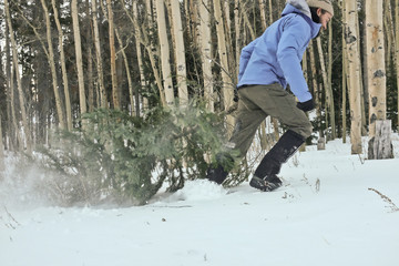 Man dragging christmas tree in snow